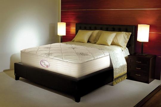 與愛侶共享無中斷甜睡,是否你的夢想?