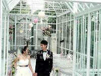 Stephanie & KaKei - 即日剪片 - Stephanie & KaKei - Casperism Wedding Production
