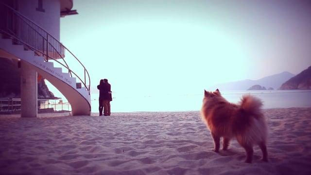 Yoyo & Derek愛的故事 - 婚禮微電影 - Yoyo & Derek - VP Angle
