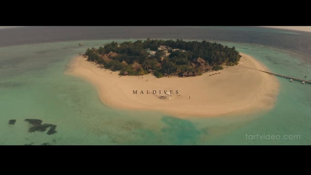 Wedding in Sunshine - Maldives - 婚禮精華 – 海外 - Amy & David - T. Art Videography